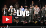 LVV Live